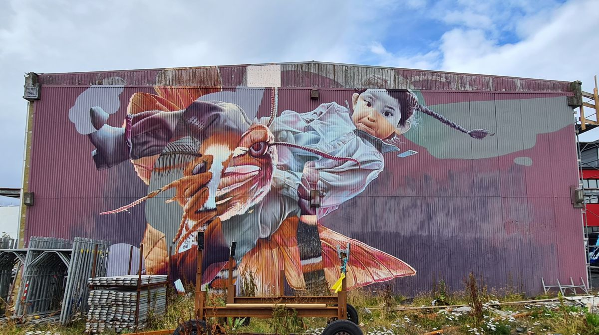 Guided Cycling Tour: Graffiti and street art in Reykjavík