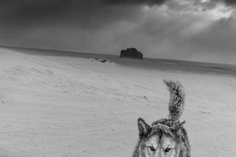 New exhibition at Hafnarhús – Ragnar Axelsson: Where the World is Melting