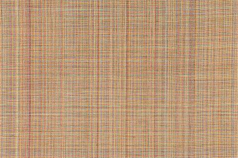 Hildur Bjarnadóttir: Ecosystem of Colors
