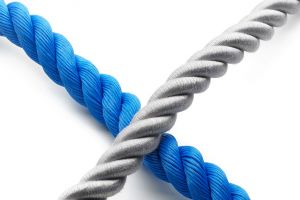 Guided tour: Knowing the Ropes