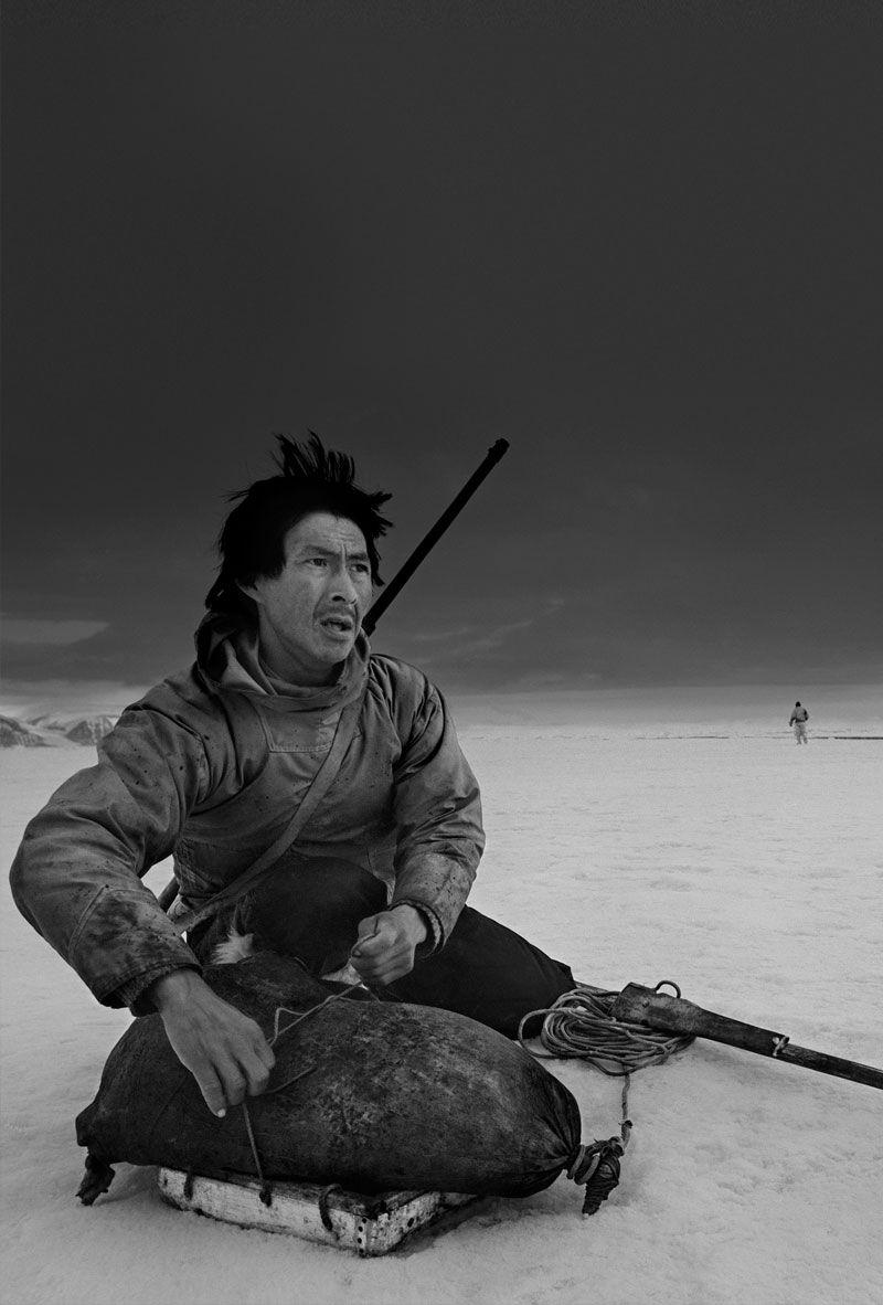 Sýning heimildarmyndar - Last days of the Arctic Hafnarhús - fjölnotasalur