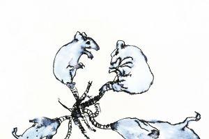 Gunnhildur Hauksdóttir: Rat Choir