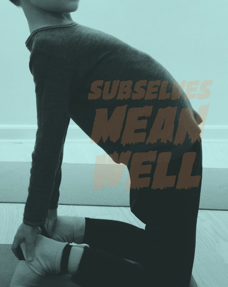 Subselves Mean Well